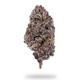 21_Insa_ProductDetail_PurplePunch_CuredFlower_600x630-min