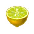 Icon-Limonene