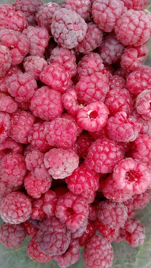 Raspberry_Flavor-576x1024