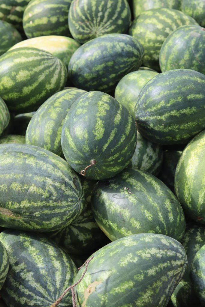 Watermelon_Flavor1-683x1024